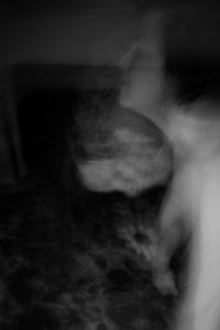 La veuve noire. Photographie noir et blanc, Arles 2017, technique de Blind Painting, Cédric Poulain.
